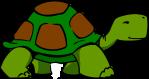 turtle_turtle